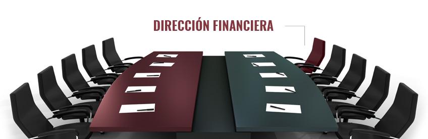 AYCE Consulting - Dirección financiera