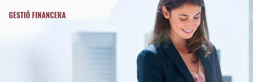 AYCE Consulting - Gestió financera